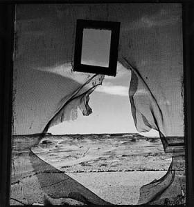 Form of a Black Feather by Lee Miller 1907- 1977
